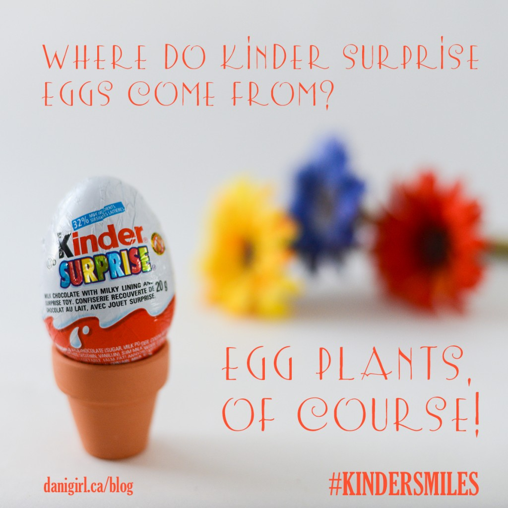 Riddle: Where do Kinder eggs from from? Eggplants, of course