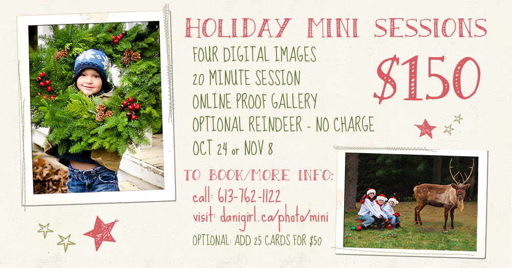 Christmas photo sessions by Ottawa photographer Danielle Donders