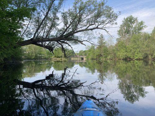 placid waters on kemptville creek