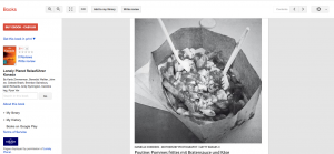 Found - LonelyPlanet Germany poutine.png