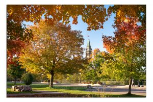 Peace tower in autumn-c73.jpg
